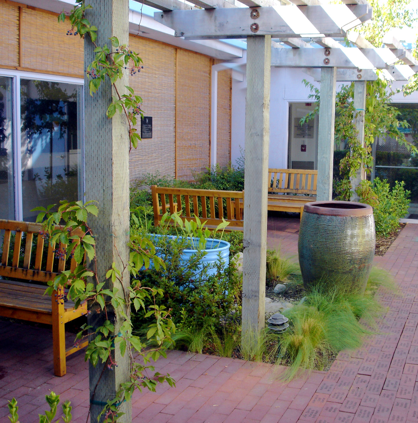 How Fred and Ginger Make A Perfect Garden California School of