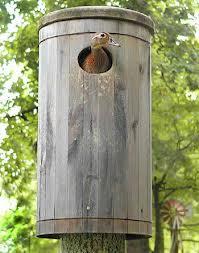 duck nest box